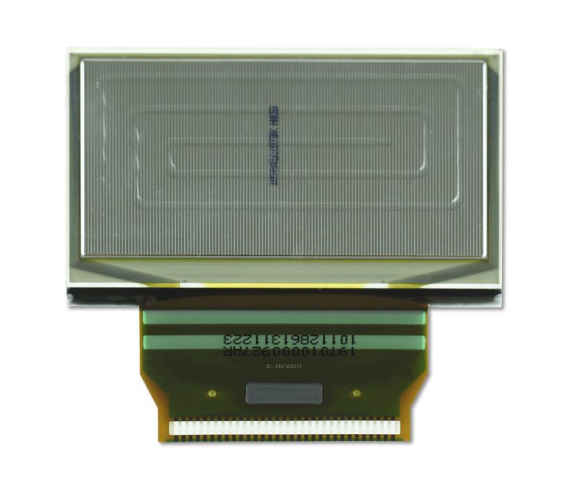 """2.4"""" White OLED USMP-P19703 Back"""